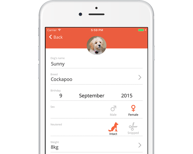 Pitpat App screenshot enter your dog's details