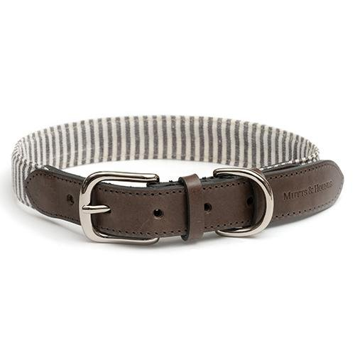 Mutts and Hounds collar